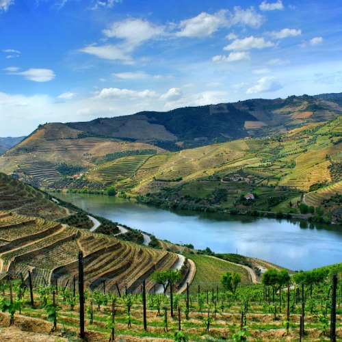 Douro Full Day Tour (R) e Douro Full Day Tour (P) - CLEVERTOURS